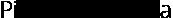 Pieter van der AA Logo